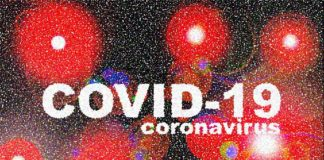 Indian scientists start genome sequencing to track COVID-19 spread